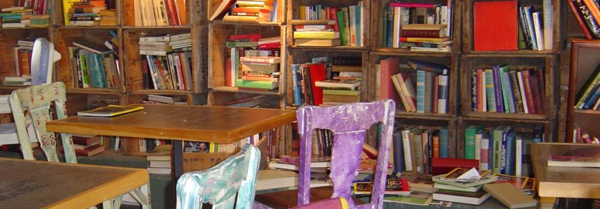 Literatura infantil e mudança social – uma análise crítica
